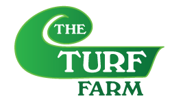 The Turf Farm – Premium Instant Lawn Buffalo, Kikuyu & Couch  Roll Out Grass Adelaide & Country South Australia.