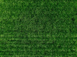 Aerial view of natural green grass texture. Green field in Finland