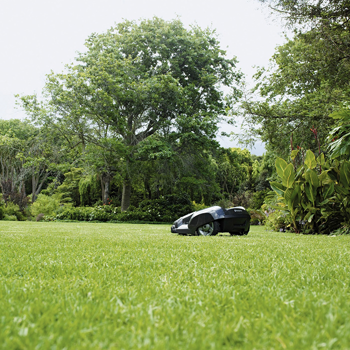 automower and lawn
