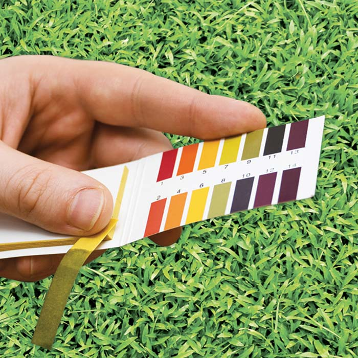 pH test on lawn
